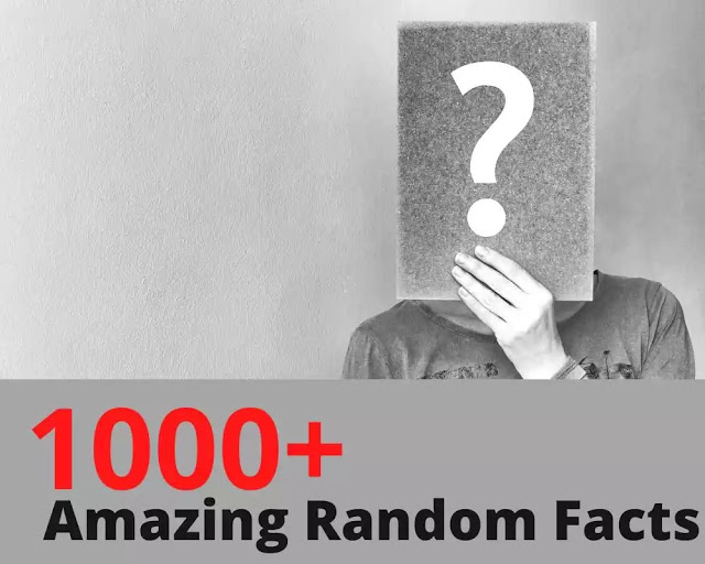 amazing random facts